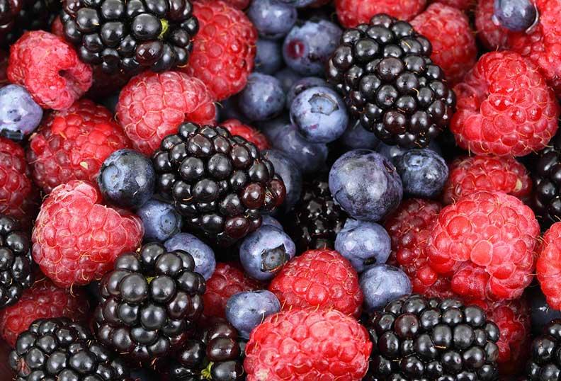 Aliments santé - Les fruits rouges