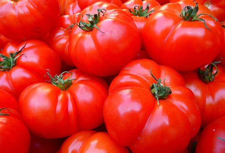 Aliments santé - La tomate