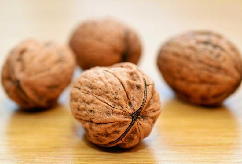 Les noix sont sources d'énergie saine et riches en sucre non raffiné
