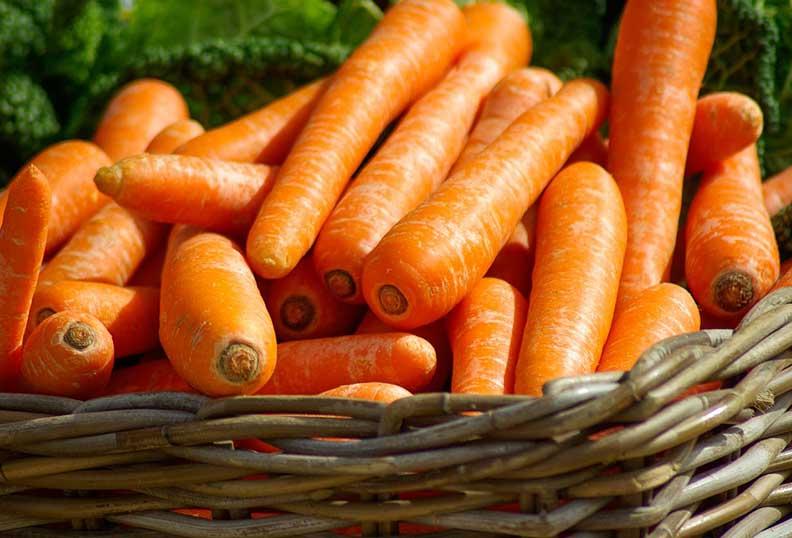 Les carottes sont riches en sucre non raffiné
