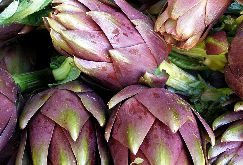 Les coeurs d'artichaut sont Très riches en fibres et en sucre non raffiné