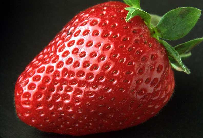 La fraise est un aliment sain riche en sucre non raffiné